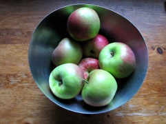 Bowl of apples for web