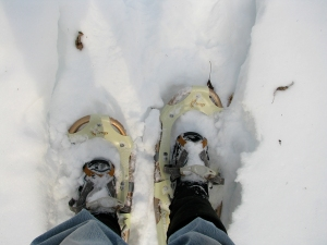 Snowshoes for web