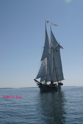 Windjammer copy