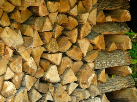 Woodpile for web
