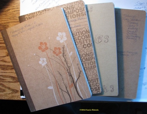Notebooks for Thieves of Fire