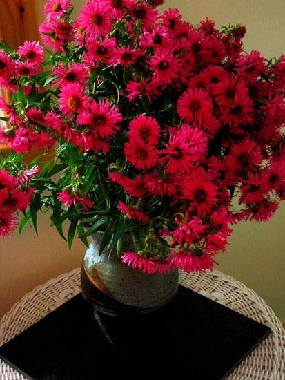 Vase of dark pink asters on porch
