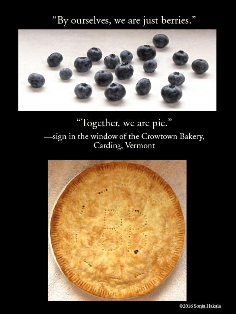 WQ-Blueberry pie