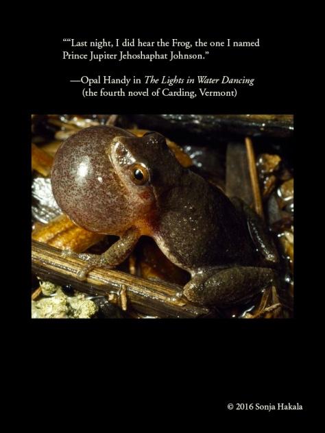 WQ-Opal Handy-frog