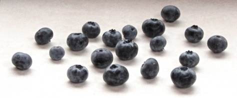 Blueberries-July 31-2016 for web