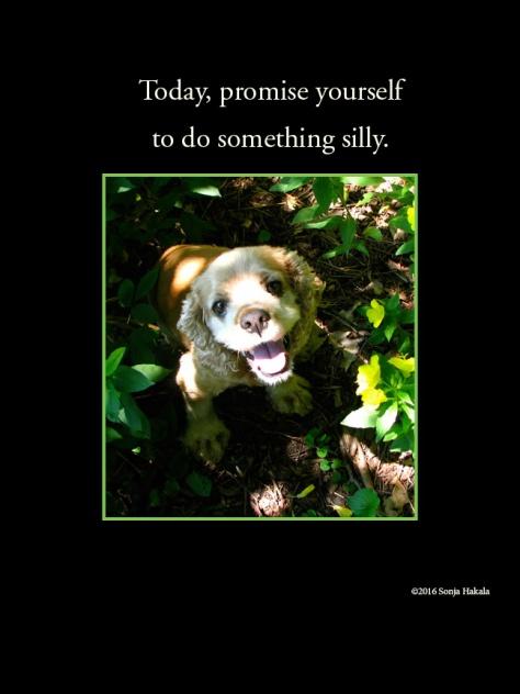 WQ-Silly dog