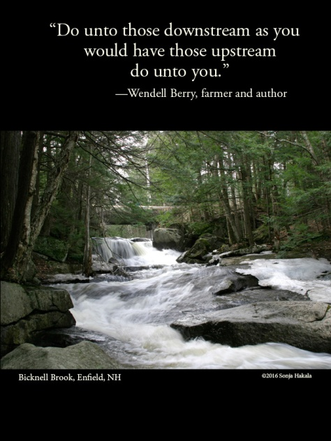 WQ-Wendell Berry