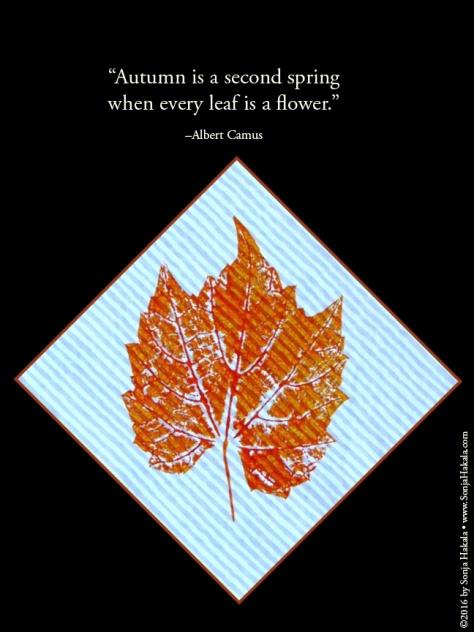 WQ-Orange stamped leaf