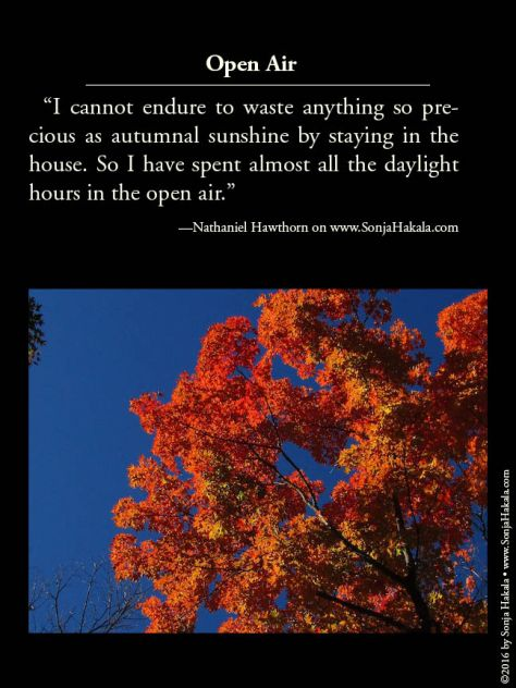 wq-hawthorne-quote