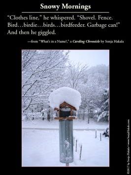 wq-bird-feeder-in-snow