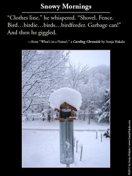 wq-bird-feeder-in-snow