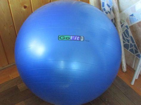 GoFit ball