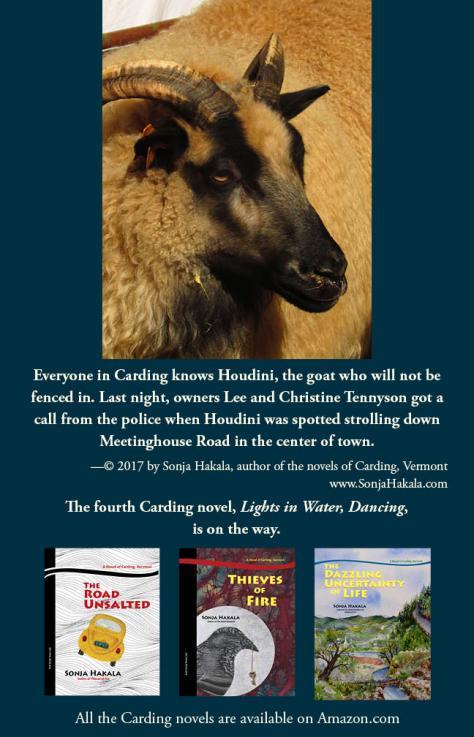 SH-Houdini