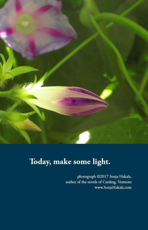 SH-light