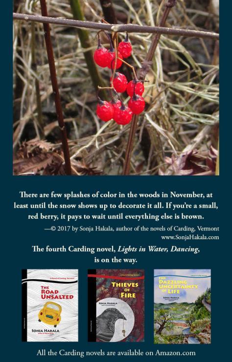 SH-deadly nightshade berries