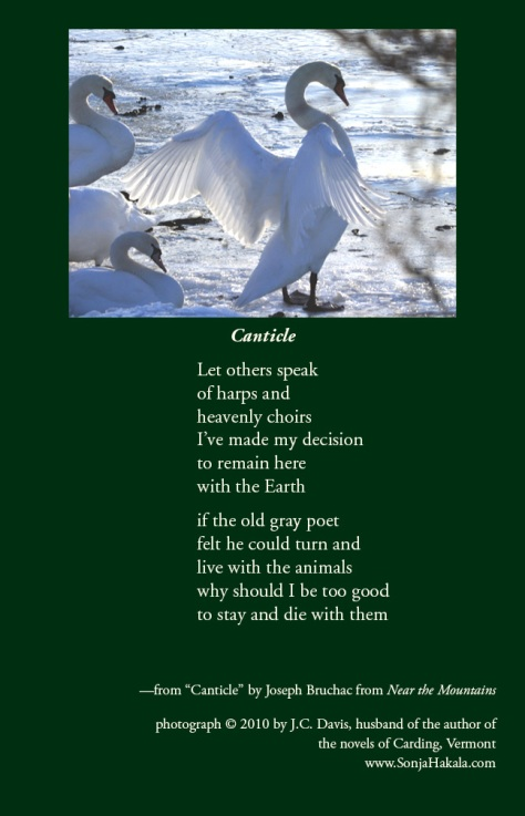 SH-canticle poetry