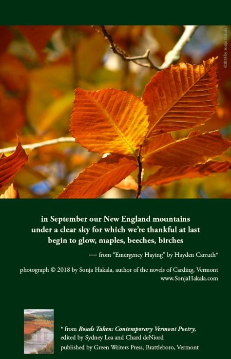 SH-foliage poetry