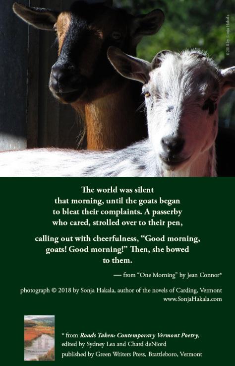 SH-goat poetry