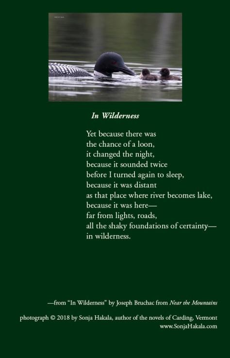 SH-loon poetry