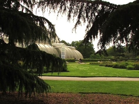 Kew greenhouse