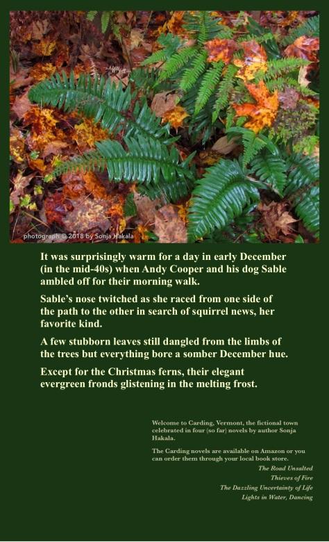 SH-Christmas fern