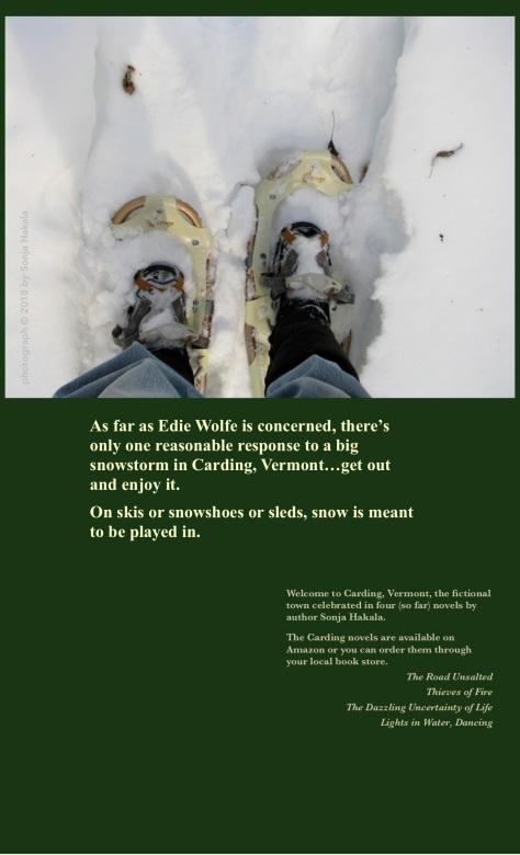 sh-snowshoes