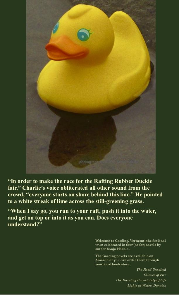 SH-Rubber Duckie