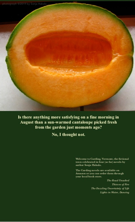 SH-Cantaloupe