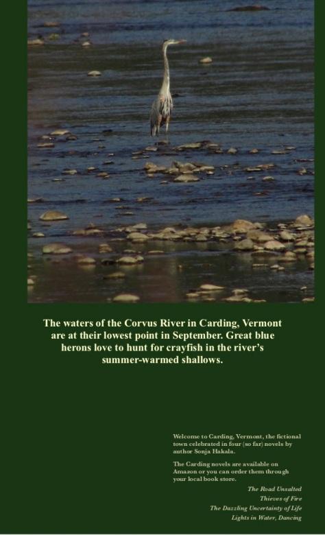 SH-Heron hunting
