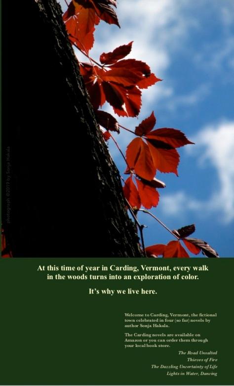 SH-Red leaves