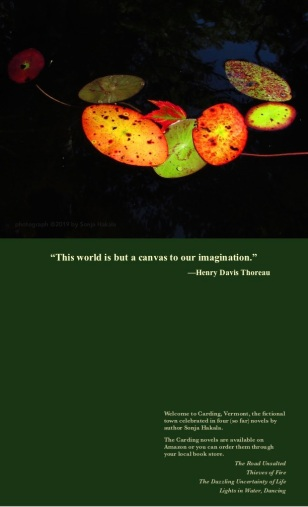 SH-Autumn leaf with Thoreau quote 2