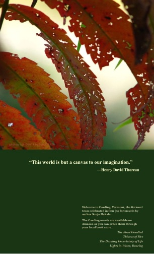 SH-Autumn leaf with Thoreau quote