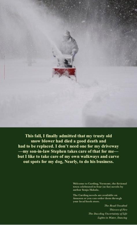SH-Snow blower