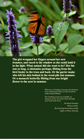SH-Monarch on zinnia