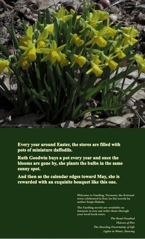 SH-Mini-daffodils bouquet